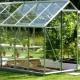 Växthus och växthus för att ge: egenskaper av valet