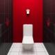 Reparação de vasos sanitários: características e idéias de design