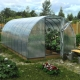 Polypropylene greenhouse: step-by-step instructions for making