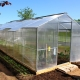 Växthusstuga: egenskaper och fördelar