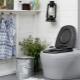 Banheiros de turfa para casa de campo: características e benefícios