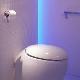 Laufen toalettskål: typer och egenskaper i valet