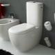 Toaletter monoblock: fördelar och nackdelar