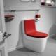 Toaletter Roca: egenskaper och populära modeller