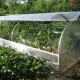 Types and features of greenhouses with opening roof