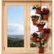 How to choose a shelf for flowers on the windowsill?