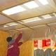 Funktioner för användning av Rockwool ångspärr för tak, väggar och tak
