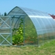 Polycarbonate Greenhouse Sizes: Selection Criteria