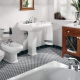 Bathroom: types and ideas of design