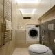 Tvättmaskin på toaletten: fördelarna med placering och designidéer