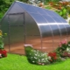 Greenhouse Droplet: characteristics and installation