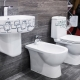 Toaletter Sanita Luxe: en mängd olika val
