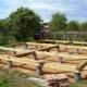 Tehnologia de selecție și construcție a fundației pentru o casă din lemn