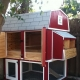 Chicken coop on 20 chickens: projects, construction and arrangement