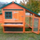 Mini-chicken coop: projects, construction and arrangement