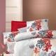 Ranfors बिस्तर: उपयोग के लिए सुविधाओं और सुझाव