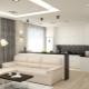 Variants of interior design kitchen-living room