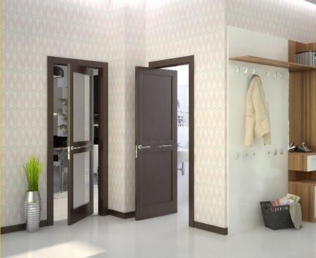 Pintu untuk tandas dan bilik mandi (64 foto): plastik ...