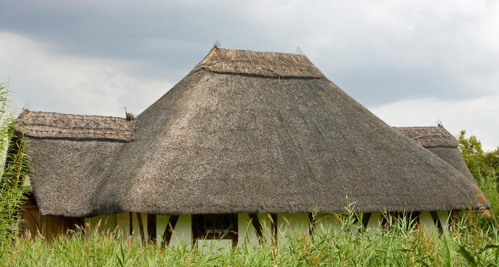 Come Realizzare Un Tetto Economico tetto di paglia (38 foto): come realizzare una casa con un