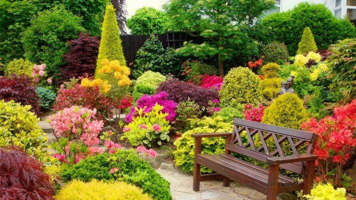 Pokok Renek Dan Bunga Dalam Reka Bentuk